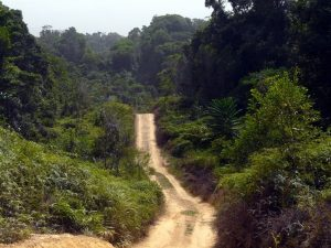 Daintree Rainforest Aventure