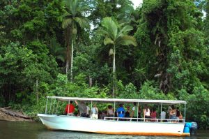 Daintree Family Holidays
