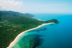 How to get to the Daintree Rainforest