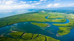 Introduction Daintree Rainforest