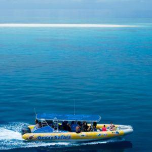Cape Tribulation Reef Trip