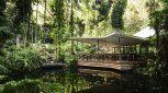 Daintree Eco Lodge Rainforest Bayan