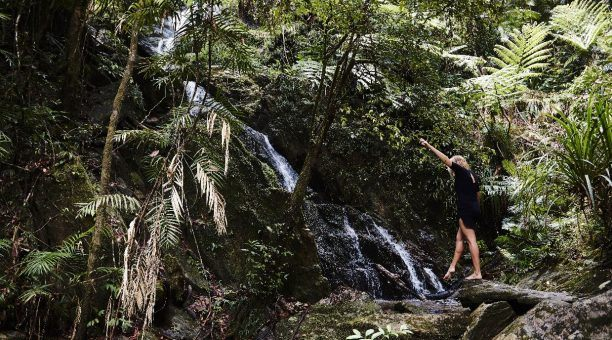 Private Waterfall at the Daintree Wellness Spa